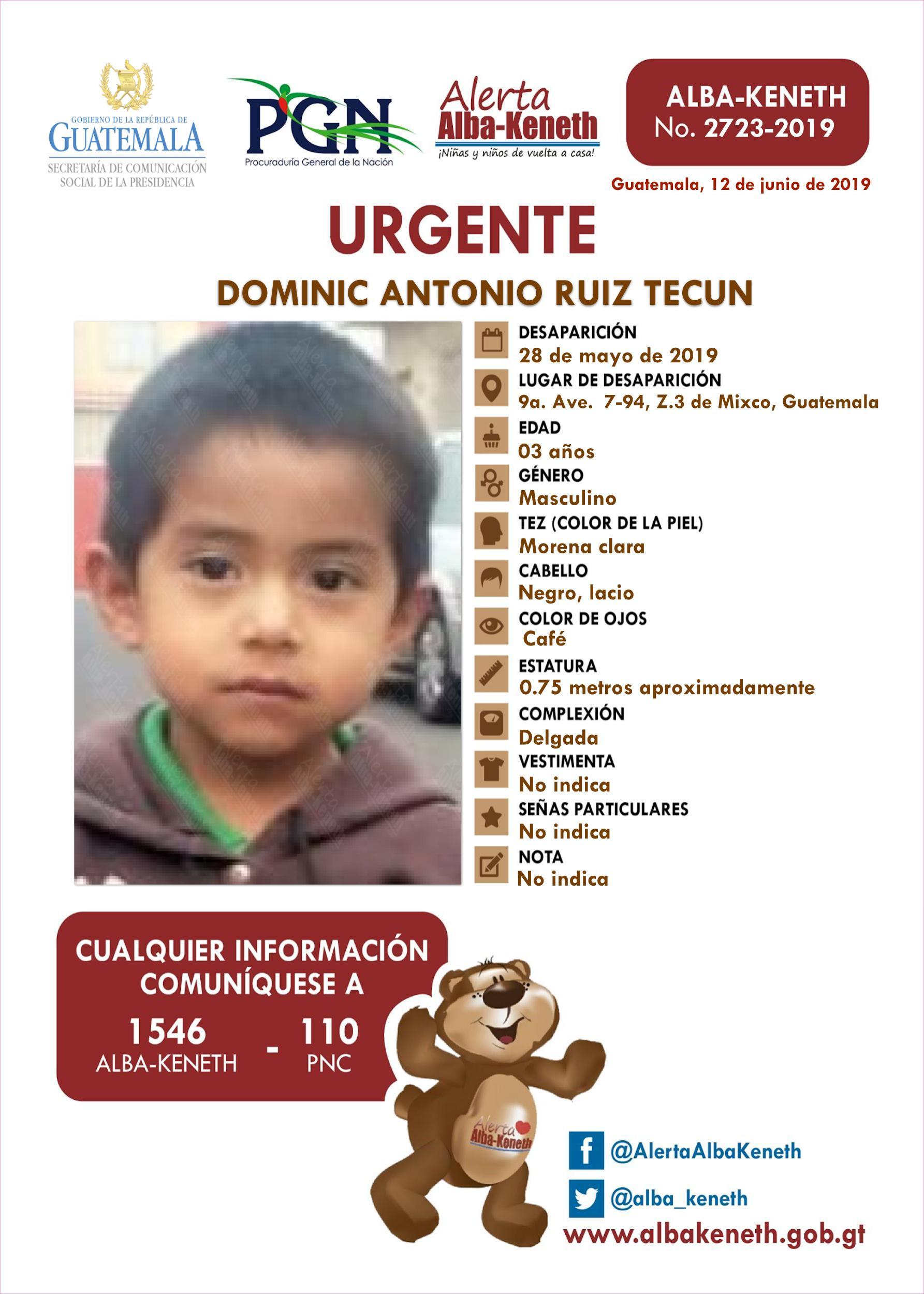 Dominic Antonio Ruiz Tecun