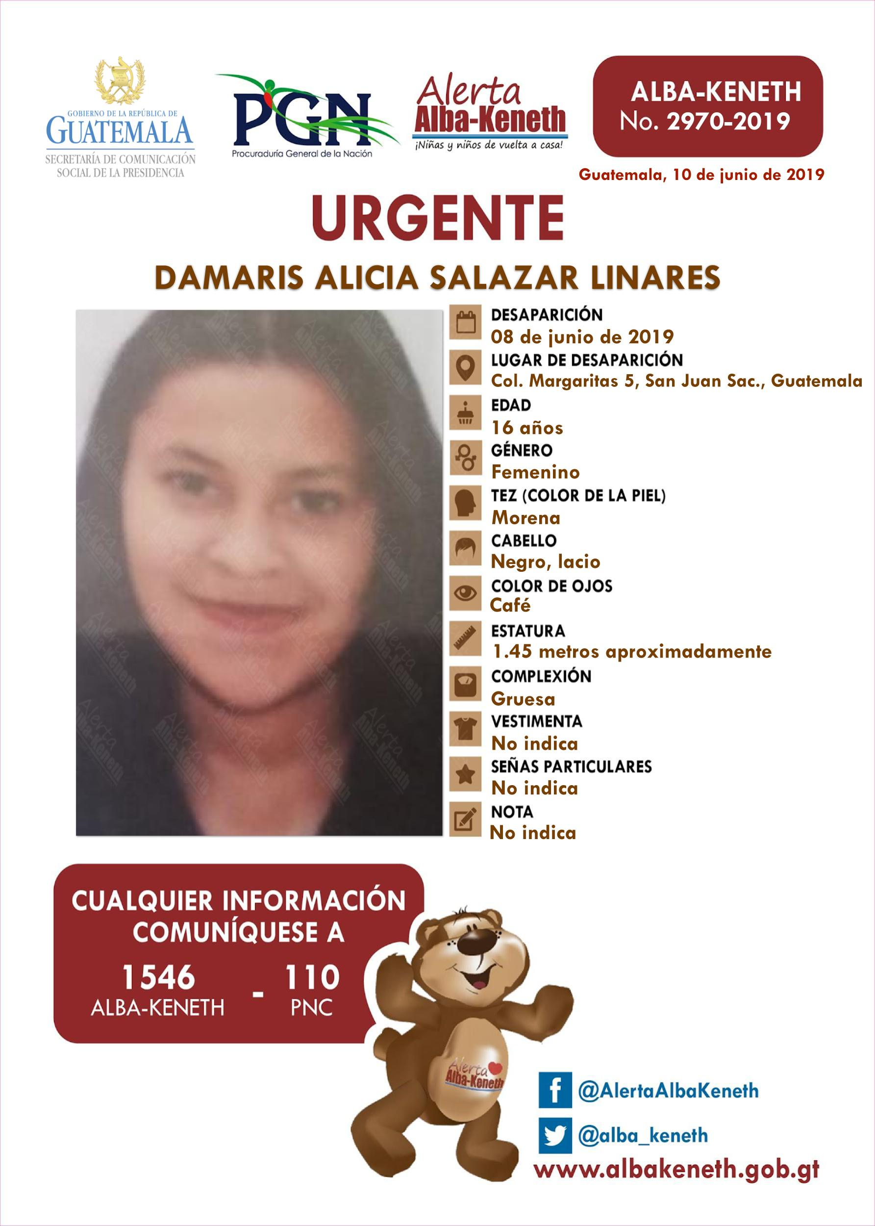 Damaris Alicia Salazar Linares