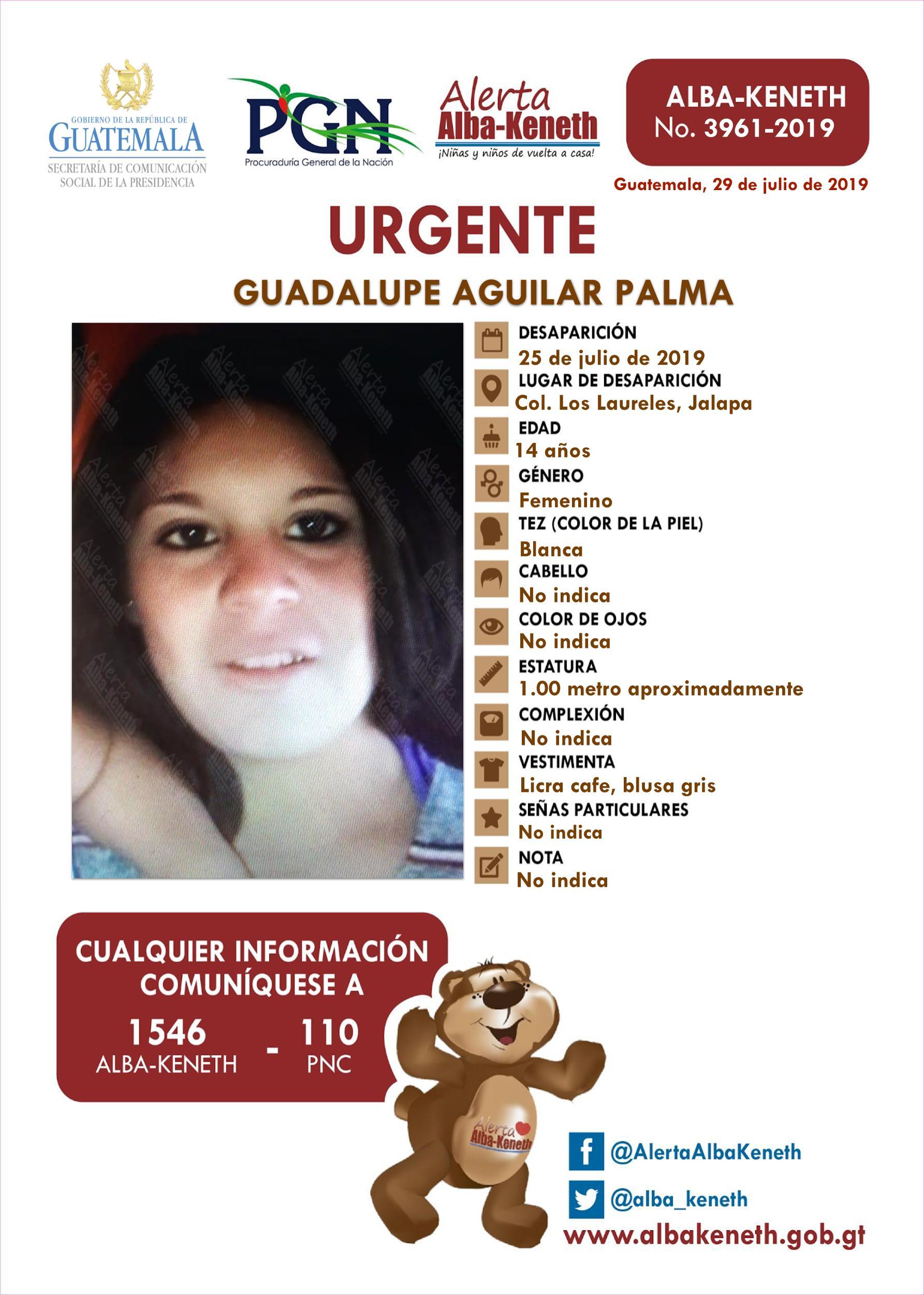 Guadalupe Aguilar Palma